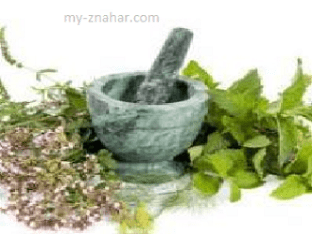 Как подбирать сбор из лекарственных растений и применять их в лечении заболеваний?