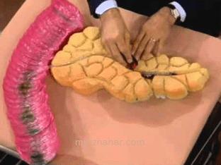 Какие симптомы заболевания поджелудочной железы?
