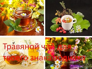 Травяной чай для твоего знака зодиака