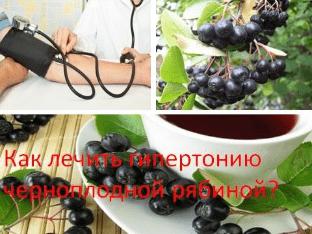 Как лечить гипертонию черноплодной рябиной?