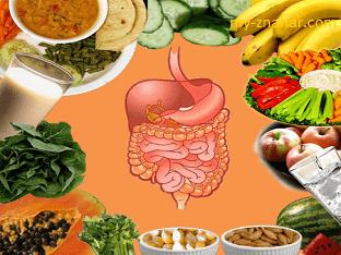 Сколько по времени в желудке переваривается пища?