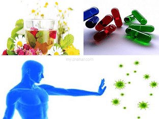 Какие лекарства выбрать для повышения иммунитета?