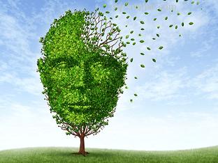 Какие симптомы помогут заподозрить болезнь Альцгеймера?