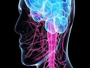 Моторная болезнь нейрона, как ставят диагноз?