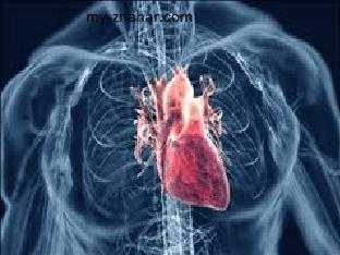 Что значит ревматическая болезнь сердца?