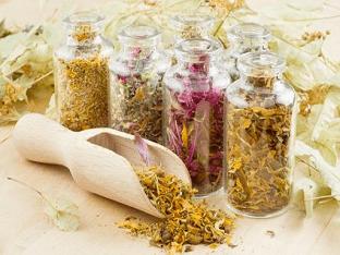 Как и какие лекарственными растениями применяется для лечения бесплодия?