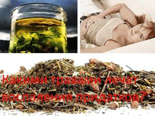 Какими травами лечат воспаления придатков?