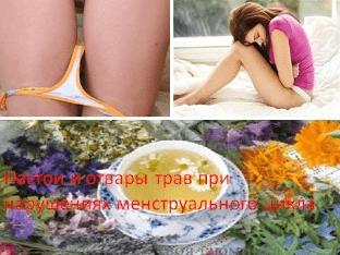 Настои и отвары трав при нарушениях менструального цикла