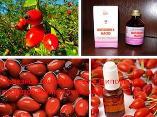 Полезное свойства масла шиповника, приготовление, применение