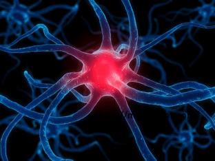 Как восстановить нервную систему, какие средства помогут