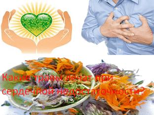 Какие травы лечат при сердечной недостаточности