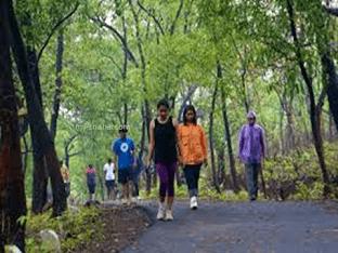 Почему полезно гулять и дышать свежим воздухом