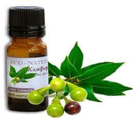 Камфорное масло: применение, свойства, что лечит