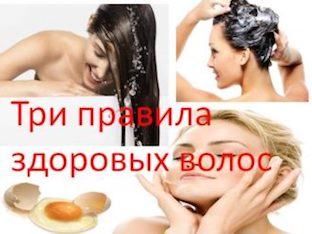 Три правила здоровых волос