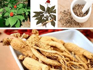 Какие есть полезные свойства у корня женьшеня