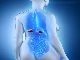 Заболевания надпочечников: Что важно знать женщинам?