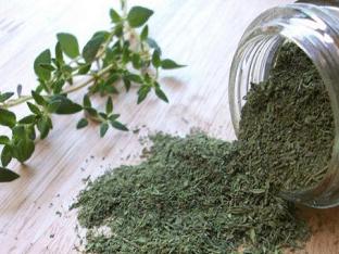 Лечебные свойства тимьяна: применение тимьяна в народной и традиционной медицине