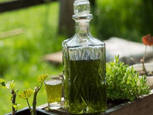 Настойка солерос — применение и рецепт