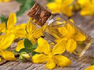 Что такое масло зверобоя, как его готовят, чем полезно для здоровья?