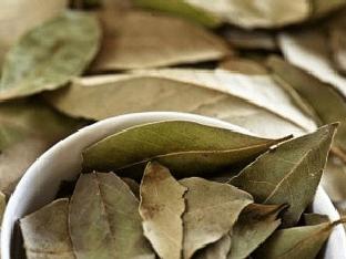 Как приготовить настой из лаврового листа?