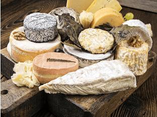 Полезен ли сыр с плесенью для организма?