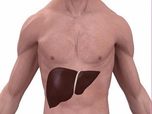 Что такое токсический гепатит: симптомы и способы лечения болезни печени