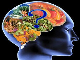 Чем питать свой мозг, пища для ума