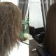 Чем полезен кератин для волос, как применять?