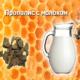 Польза от применения прополиса с молоком, показания и противопоказания, правила приема