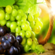 Чем полезен виноград для организма?