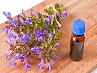 Приготовление и применение настойки шалфея на водке (спирте)